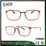 Het populaire Optische Frame van het Oogglas Ultem Plastic Eyewear met Tempel 8004 van de Vezel van de Koolstof