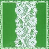 Bello disegno di merletto elastico per biancheria