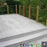Revestimento composto plástico de madeira das vendas quentes (TS-01)