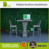 Штанга мебели ротанга сада установила с валиком для напольного