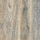 Tegels van de Vloer van het Porselein van Inkjet de Houten (KDM66001)