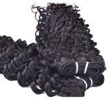高品質の自然な黒は染められたバージンの加工されていなく深い波のマレーシア人の毛である場合もある