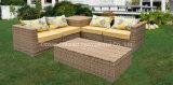 Mobilia di vimini del patio del sofà del PE della mobilia del giardino