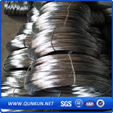Rete metallica dell'acciaio inossidabile (Dutch, saia, pianura tessuti)