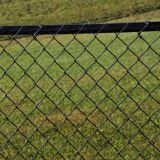 Сетка звена цепи PVC Coated, панель загородки сетки диаманта