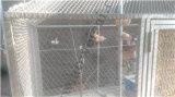 Aviary Mesh - Acero inoxidable Rope Mesh Casa de las aves