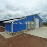 Alta calidad directa de granja de pollo grande de la estructura de acero de la fábrica