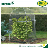 La planta al aire libre plegable del PVC de Onlylife crece el invernadero plegable