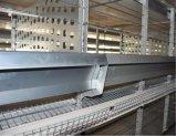 La volaille automatique de poulet de qualité grande mettent en cage le matériel de ferme pour la technologie Breeding de Poul de poulet (type bâti de H)