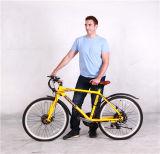 電池48V 750Wが付いている電気バイク