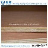 La madera contrachapada comercial alta/media/de baja calidad con el mejor precio