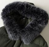 Куртка оптовых популярных Windproof женщин клобука зимы длинняя вниз