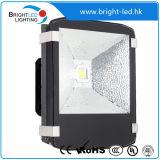 높은 루멘 Brigelux IP65 LED 플러드 빛 상해