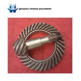Il circuito di collegamento a spirale personalizzato BS6039 degli ingranaggi conici innesta 8/35 di ingranaggio conico elicoidale differenziale automatico