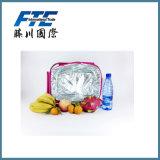 Sac en gros de cadre/glace de /Cooler de sac de refroidisseur de pique-nique