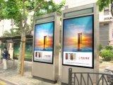 suelo al aire libre 65inch que coloca la visualización al aire libre de Advertisng