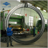 Большое Diameter Slewing Bearing для Crane
