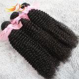 8A高品質のブラジルのバージンの毛のねじれたカールの毛のよこ糸