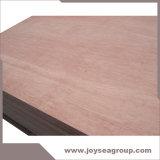 Bintangor u Okuman hizo frente a la madera contrachapada con el grado de la base B/C del álamo