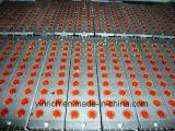 Dispositif Centre-Remplissant de chocolat (CCT200)