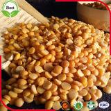 Dhal/黄色の黄色い分割されたエンドウ豆