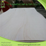 Good Quality를 가진 Linyi Qimeng Supply 3mm Poplar Plywood