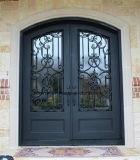 Erstaunliche handgemachte bearbeitetes Eisen-Haustüren mit Sidelites