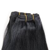 バージンの加工されていないペルーまたはブラジル人またはインド人かロシアまたはヨーロッパの人間の毛髪の編むか、またはExtesions