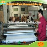 Papier direct de coupeur de traceur d'usine