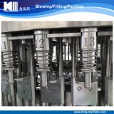 De Installatie van de Machine van het Flessenvullen van het Drinkwater van de Fabrikant van China