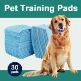 강아지와 성숙한 개 (TP2436)를 위한 큰 훈련 패드