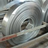 bobine d'acier inoxydable de la catégorie 304 316 comestible
