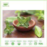 Blad 100% van Stevia de Natuurlijke Uittreksels van de Installatie