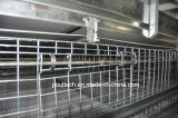 H печатает рамке автоматическую клетку на машинке цыплятины клетки бройлера используемую в доме цыпленка