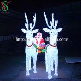 De decoratieve OpenluchtVerlichting van Herten