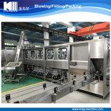 自動瓶のバレルの中国の工場からのびん詰めにする充填機のプラント