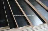 El mejor Prices Film Faced Plywood de Building Material (3/4 18m m)