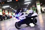 Ягнит оптовая продажа Bike мотоцикла 3 колес электрическая