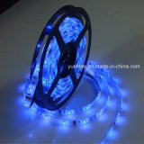 12V 5050SMD LED Strip für Outdoor Lighting
