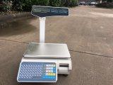 Escala electrónica de Kf-T LCD 30kg con la impresora de la escritura de la etiqueta