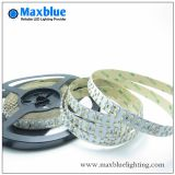 DC24V 240LED / M Double rangée 3528 SMD LED Strip Light