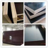 Переклейка конструкции пользы бетонной плиты/переклейка форма-опалубкы