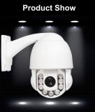 ネットワークCCTV Outdoor IP66 2 Megapixel 1080P Dome IP Camera