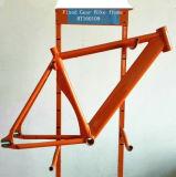 Örtlich festgelegter Gang-Fahrrad-Rahmen gebildet von der Mg-Legierung