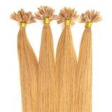 高品質の釘の毛の拡張100%人間の毛髪