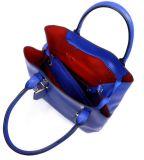 De beste Merken van de Handtas van het Leer van de Ontwerper van de Handtassen van de Dames van de Manier van de Zakken van het Leer van de Ontwerper Nieuwe