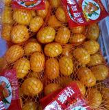 Mandarin van de Baby van de goede Kwaliteit Kleine Zoete