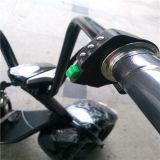 اثنان عجلة كهربائيّة سرعة قوة درّاجة ناريّة [سكوتر]/[ستكك] مع [لد] عرض