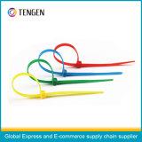 Justierbares Längen-kundenspezifisches Drucken-Plastiksicherheits-Dichtungen