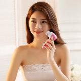Massager limpio profundo facial eléctrico del cepillo del cuidado de piel